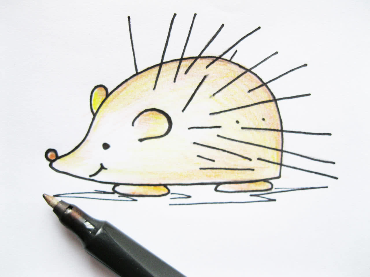 Рисуем ёжика карандашами
