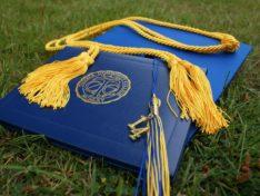 Как проверить подлинность диплома