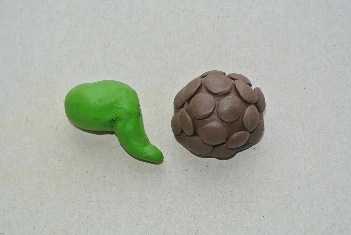 Лепим голову черепахи