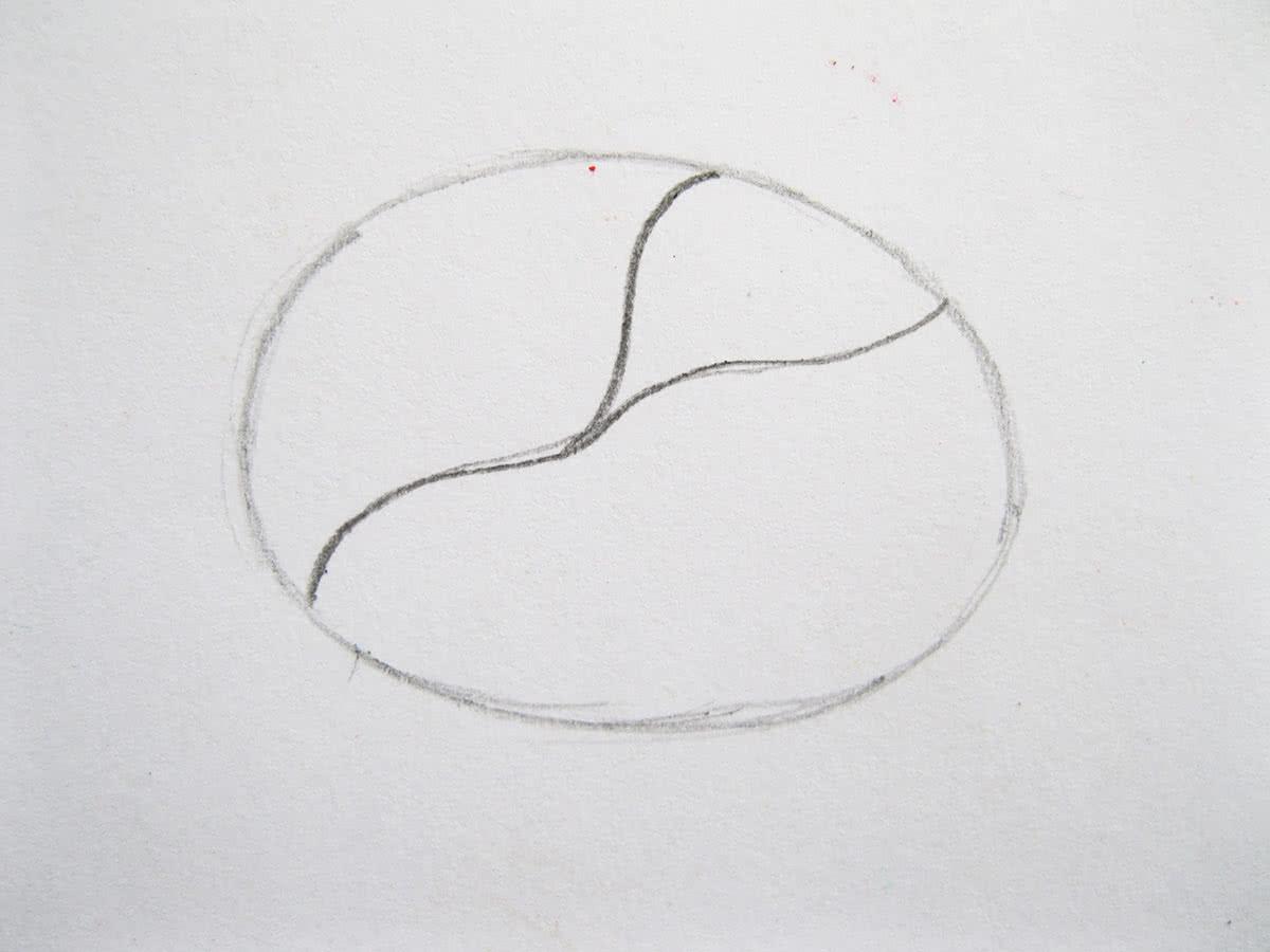 Как нарисовать капусту шаг 2