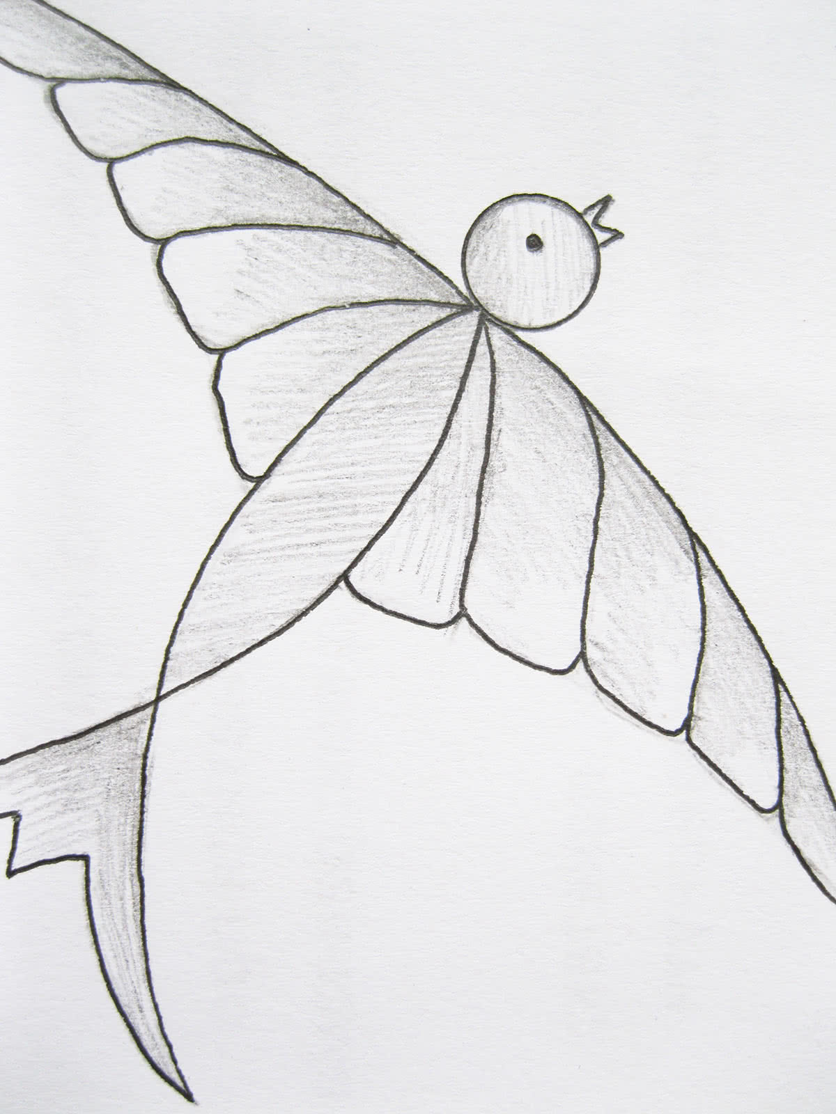 Рисунок ласточки карандашом