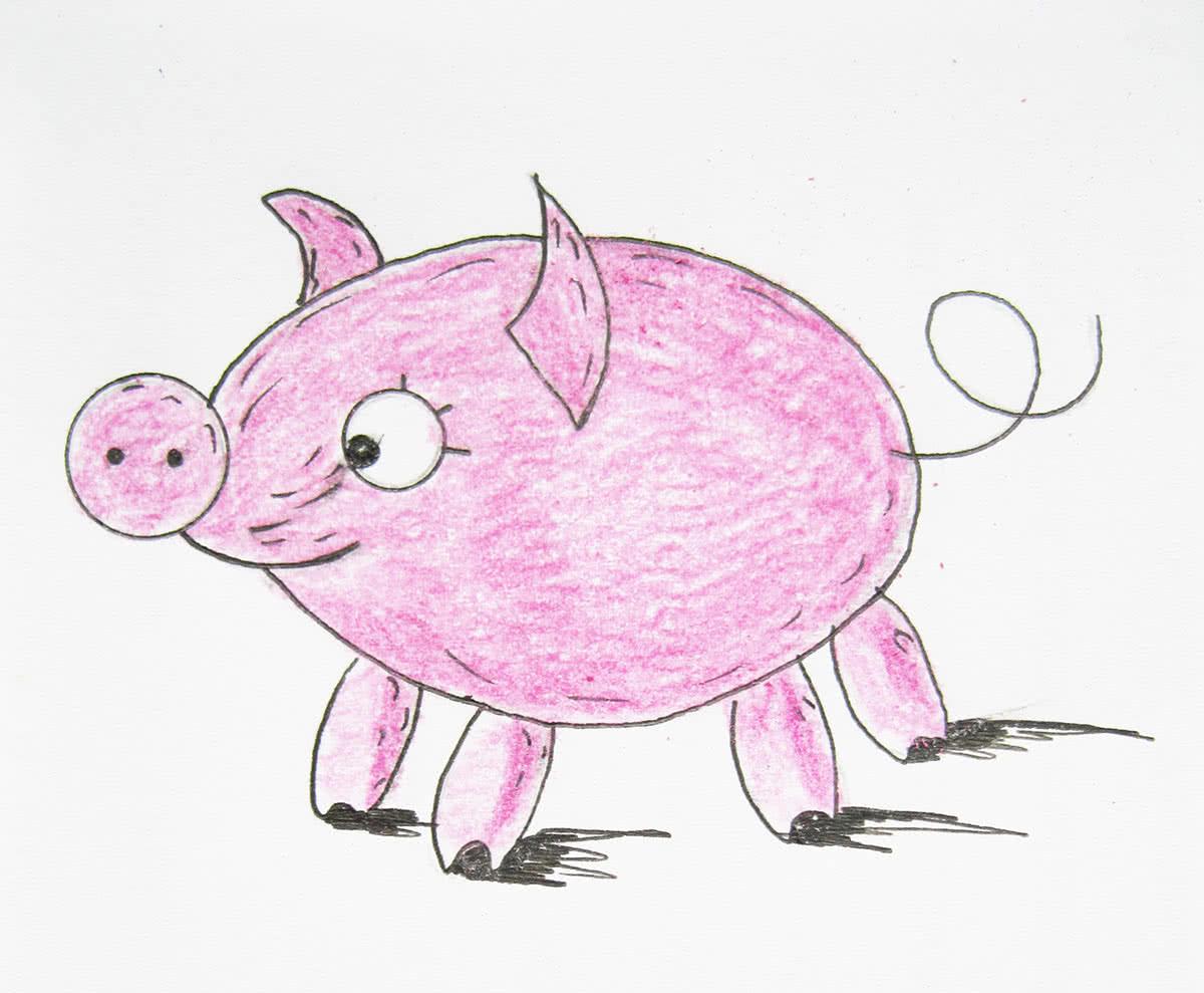 Рисунок свиньи карандашом
