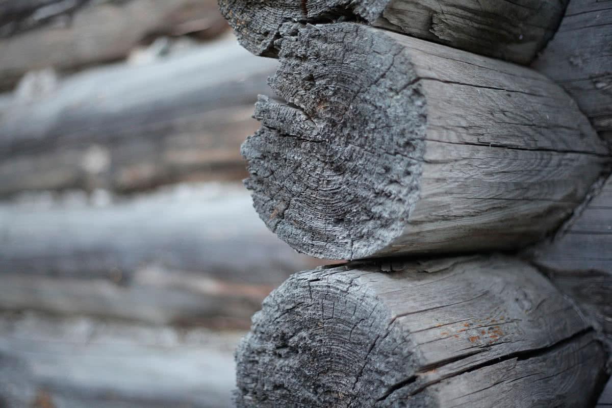 Деревянный дом особенности