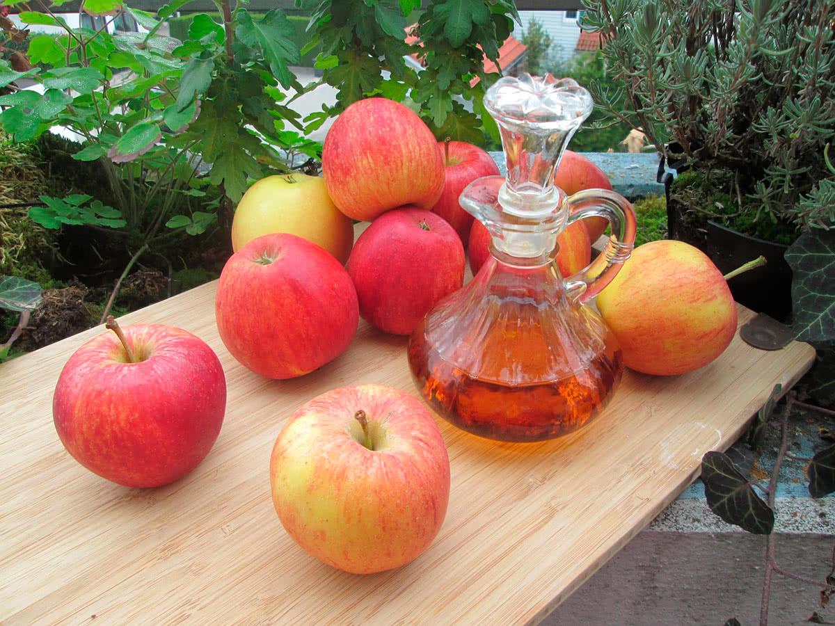 о пользе яблочного уксуса для организма
