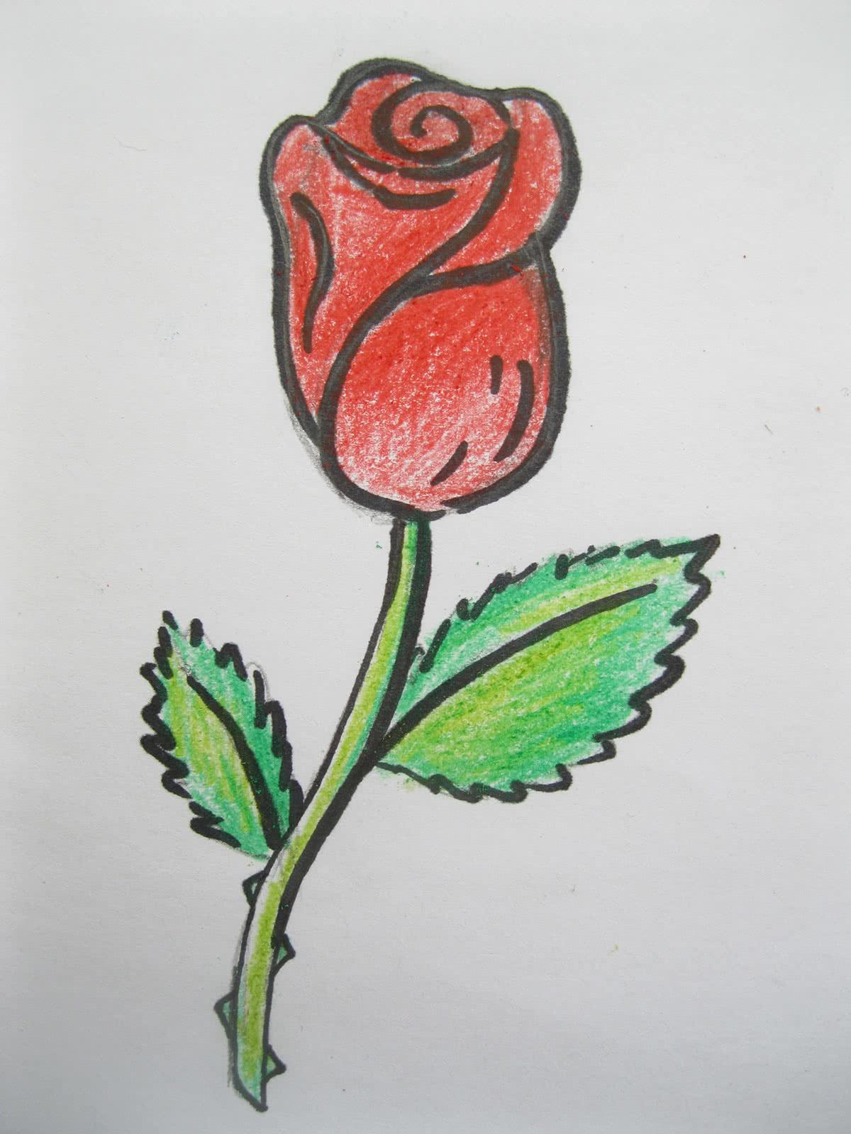 Пошагово как нарисовать розу