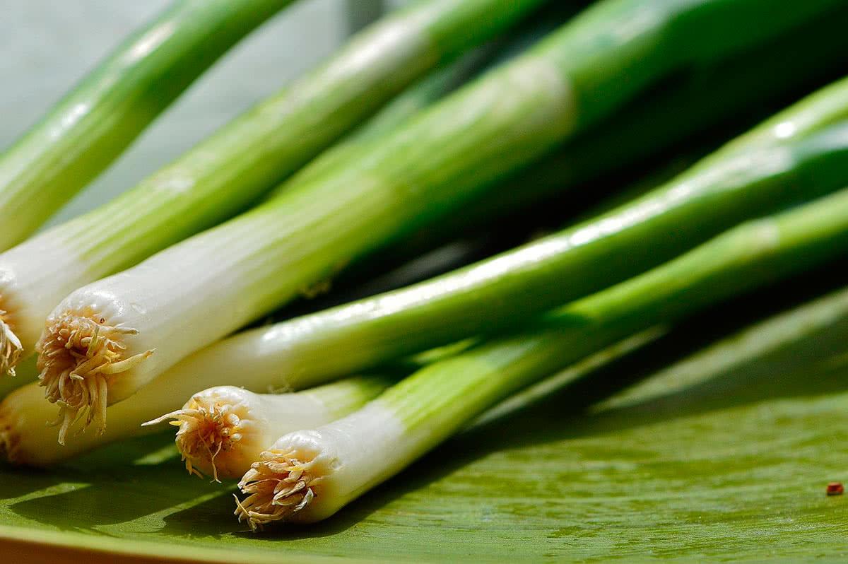 Как выбрать зелёный лук