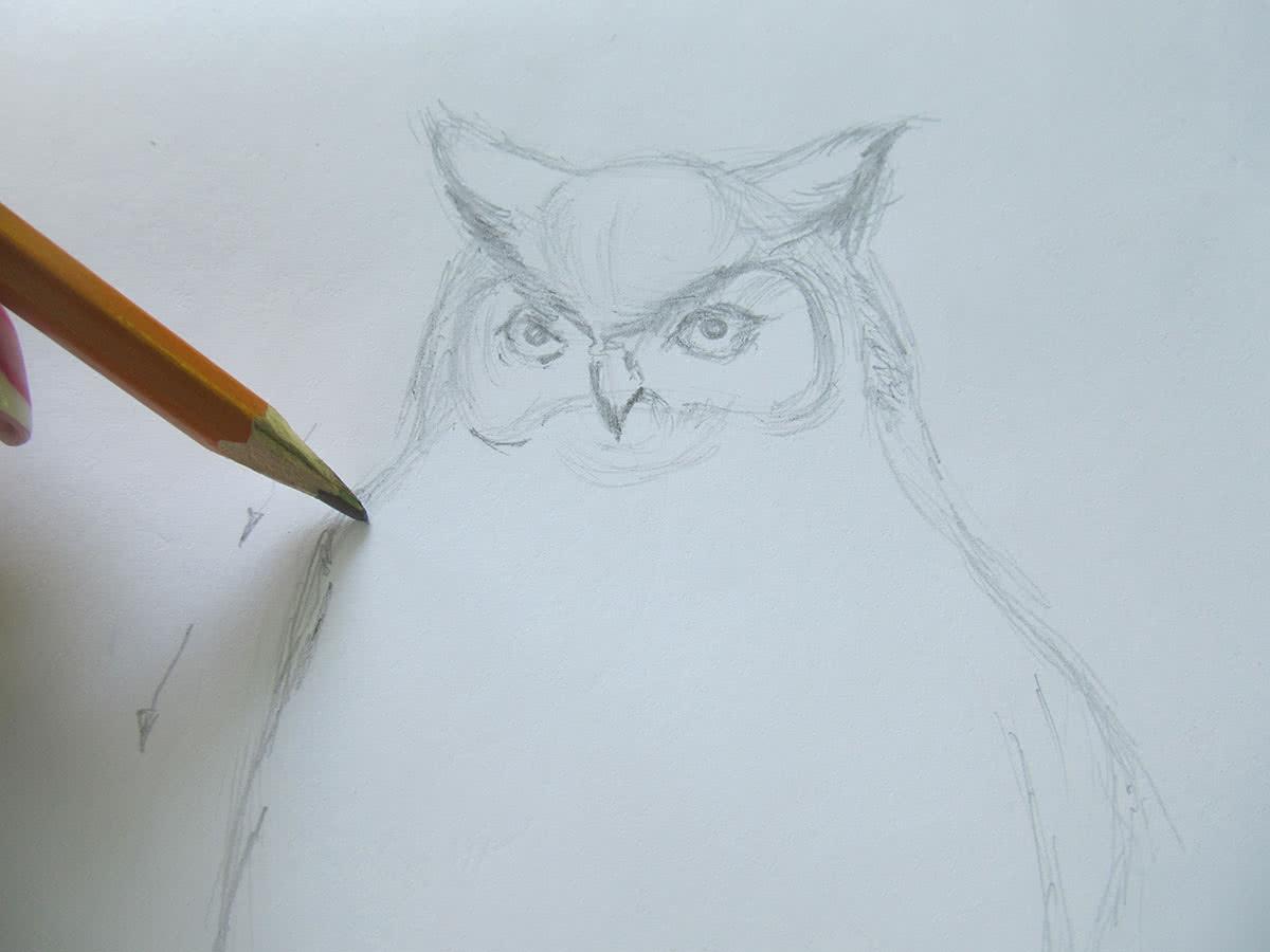 Рисуем сову поэтапно