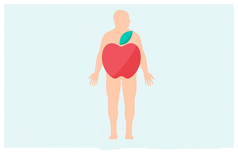 Роль метаболизма