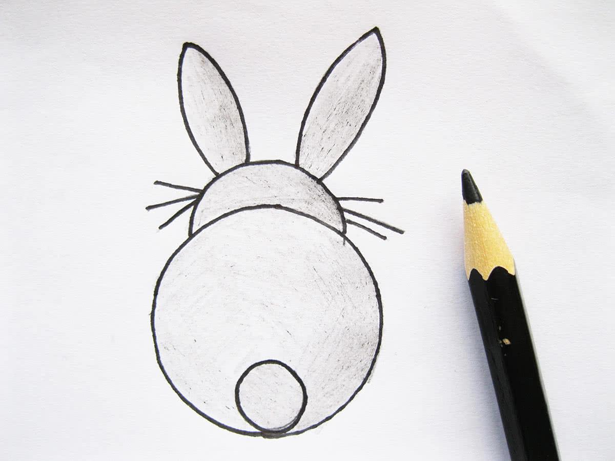 Как нарисовать кролика карандашом