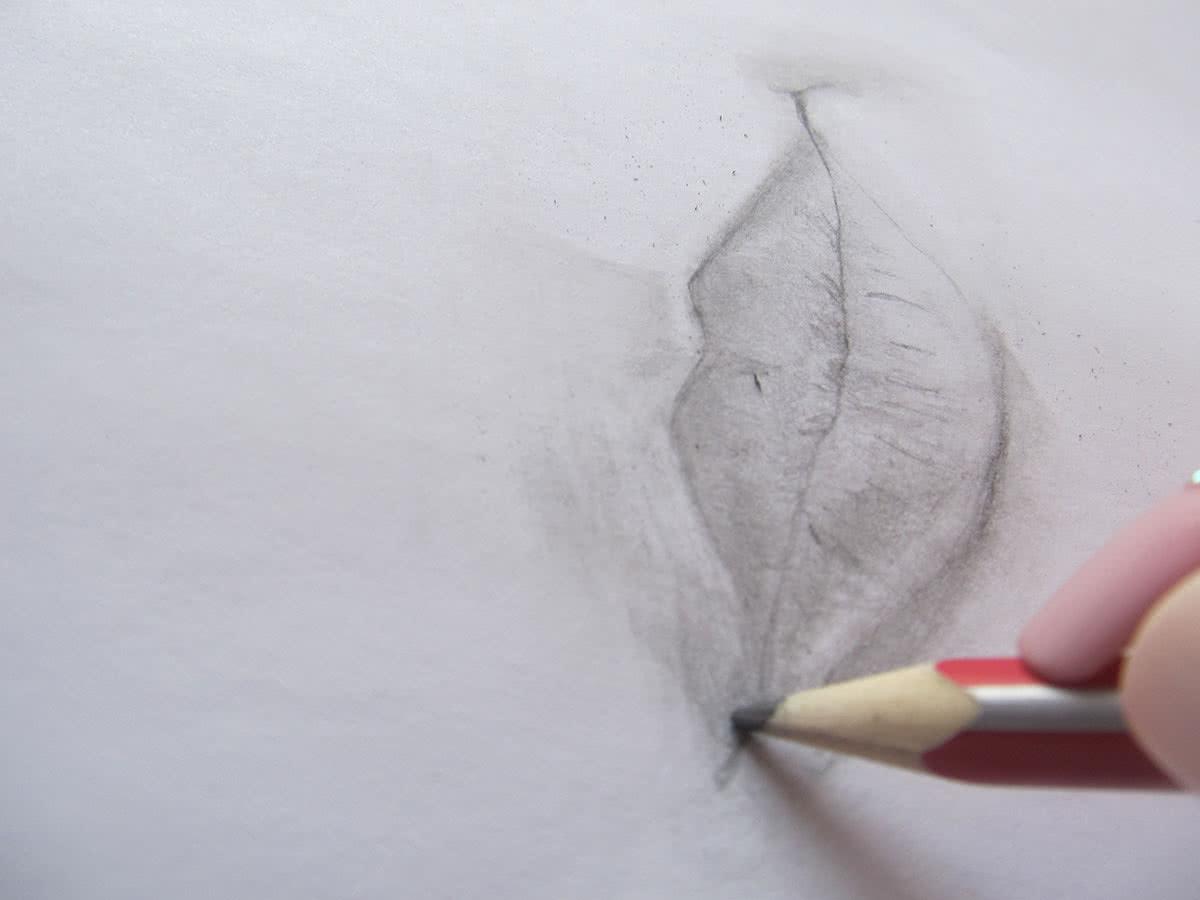 Рисунок губ