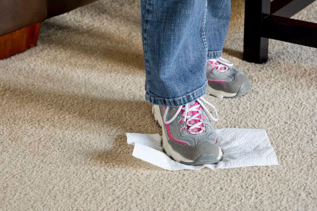 Чистка кошачьей мочи на ковре
