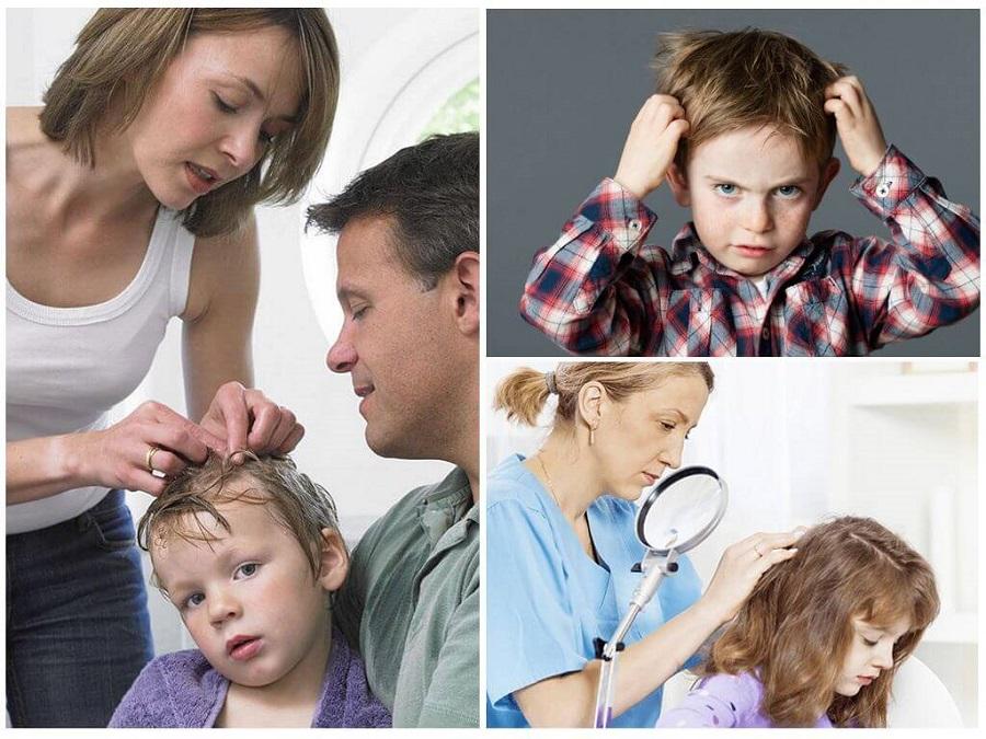 У ребенка вши, что делать