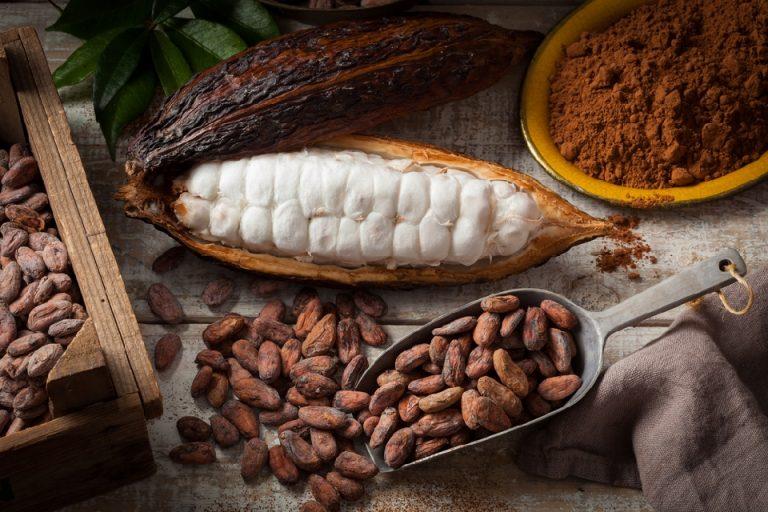 Какао – 9 интересных фактов